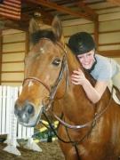 Equestrian teacher/trainer