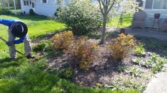 YEAR ROUND LANDSCAPING