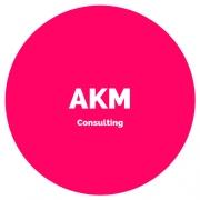 AKM Consultng LLC
