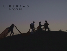 Libertad Collective