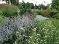Donald Pell Gardens