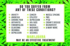 Cannabis For Wellness