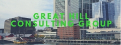 Great Hill Consulting Group