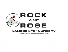 Rock & Rose Inc