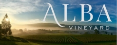 Alba Vineyard