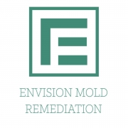 Envision Mold