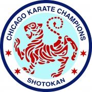 Chicago Karate Champions