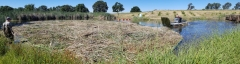 Fuentes Lake and Pond Management