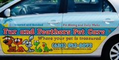 Fur and Feathers Pet Care