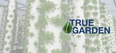 True Garden
