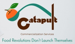 Catapult Commercialization Services
