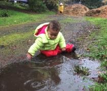 Wild Primrose Preschool