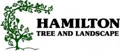 Hamilton Tree and Landscape