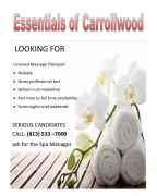 Essentials Massage of Carrollwood