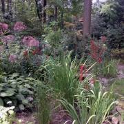 Garden Gal & company