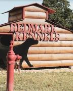 Redmark Kennels