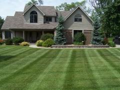 Lawns by Carlito Inc