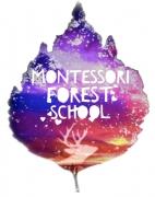 Montessori Forest School
