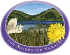 The Watershed Nursery
