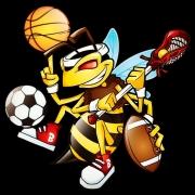 Bee In Motion LLC